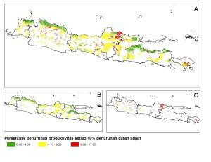 dampak kekeringan di Jawa Bali (mandala 2012)